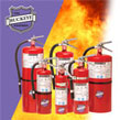 Purple K Dry Chemical Buckeye Fire Extinguisher